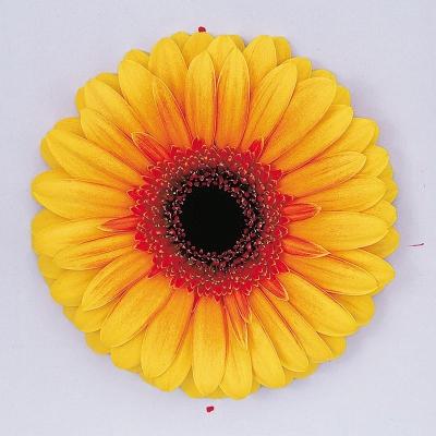 Gul og appelsínugul blóm image
