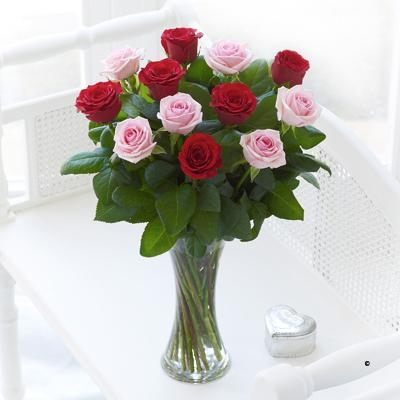 12 Red and Pink Roses image