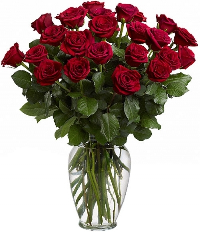 25 Red Roses image